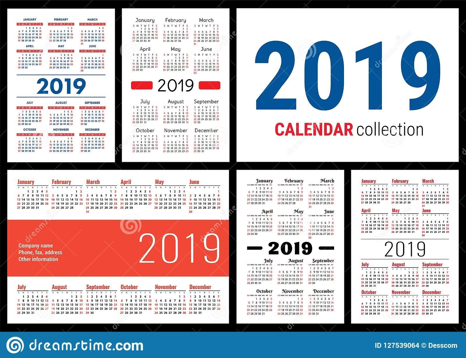 Calendar 2019. English Vector Template. Big Collection Of Pocket Types Of Calendar Printing